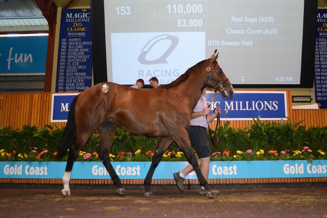 Real Saga Colt Tops Day One of March Yearling Sale
