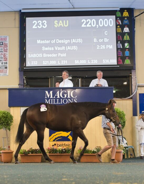 Master of Design Colt Tops Day Two of Adelaide Sale