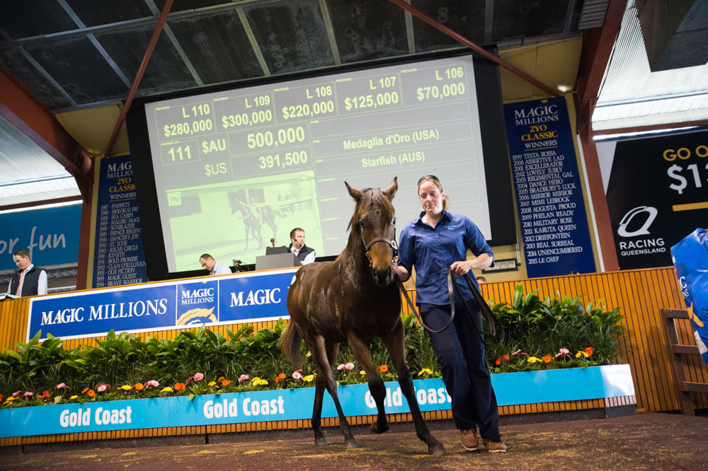 Average Soars 40% at National Weanling Opener