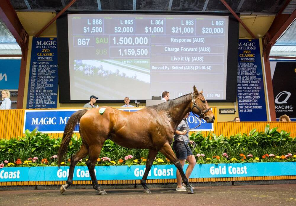 Response Tops Day Two of National Broodmare Sale