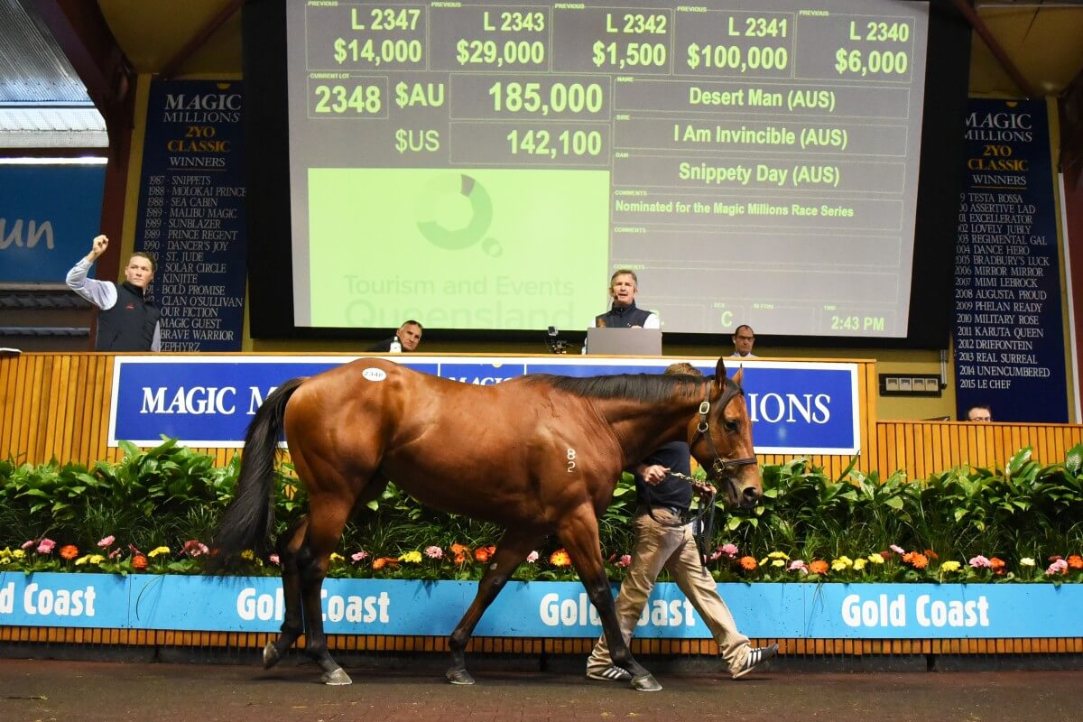 Desert Man Tops Day as National Sale Grosses $93.6 Million