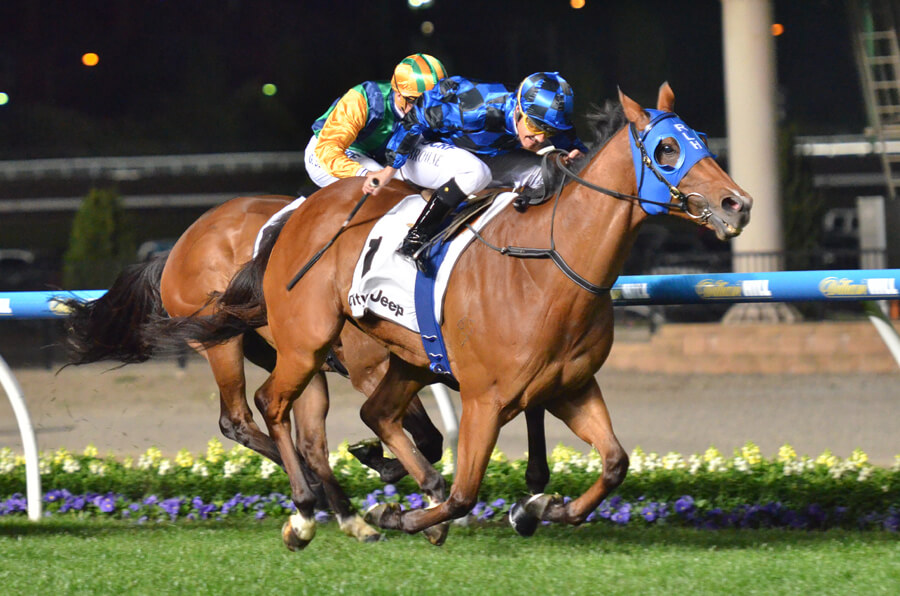 Tuff Buff Passes $5 million with Fifth Group One