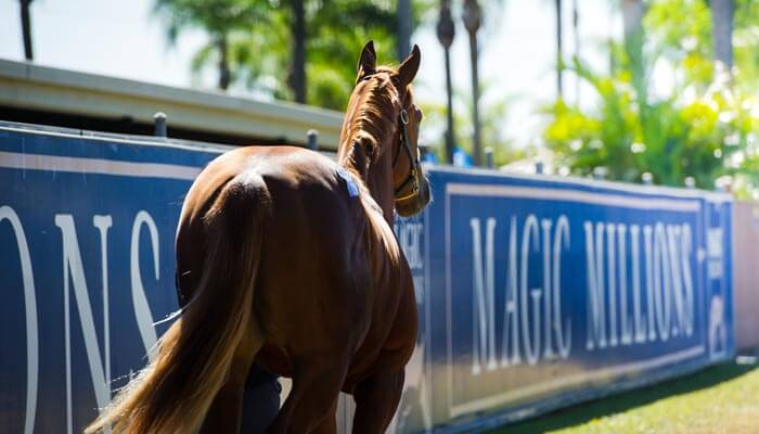 Entries Closing for National Sale