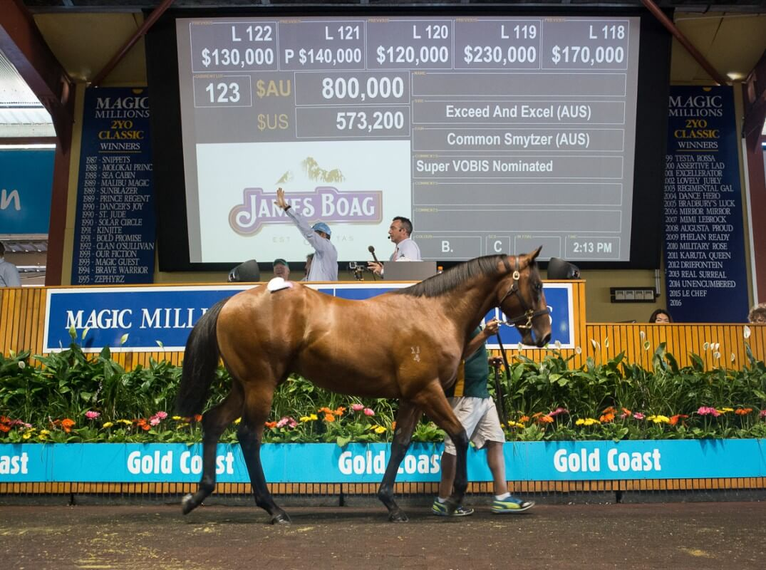 Exceed and Excel Colt Stars on Day One