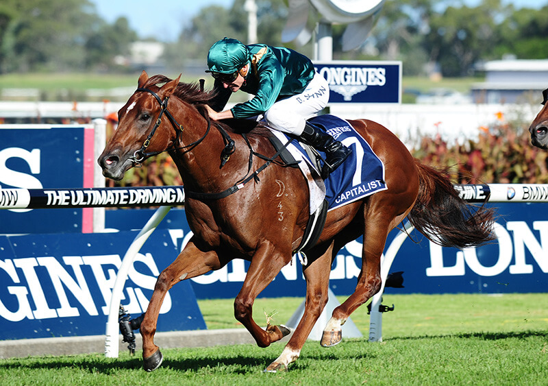 Capitalist Storms to Slipper Stardom