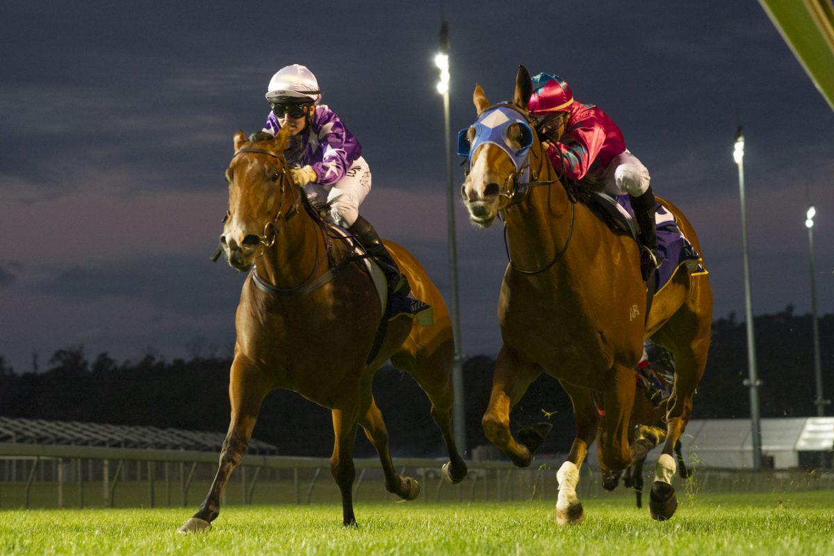 Mowbray Shines on Tassie Sale Eve