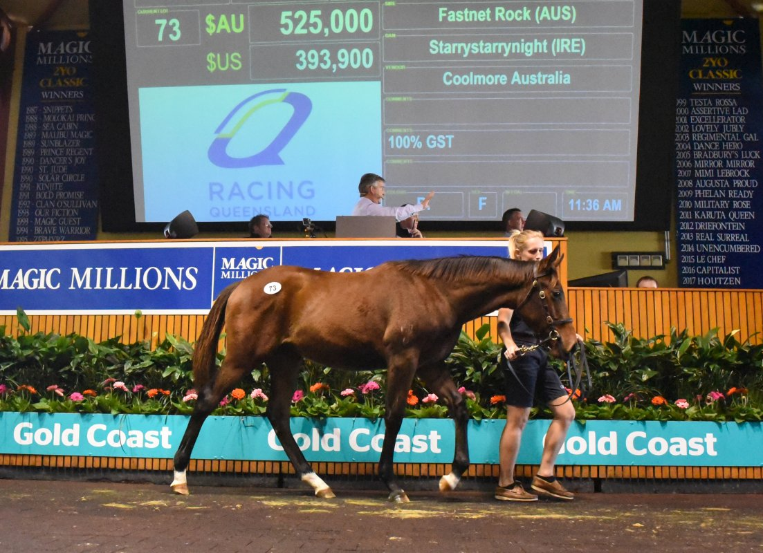 Fastnet Rock Filly Tops National Weanling Sale Opener