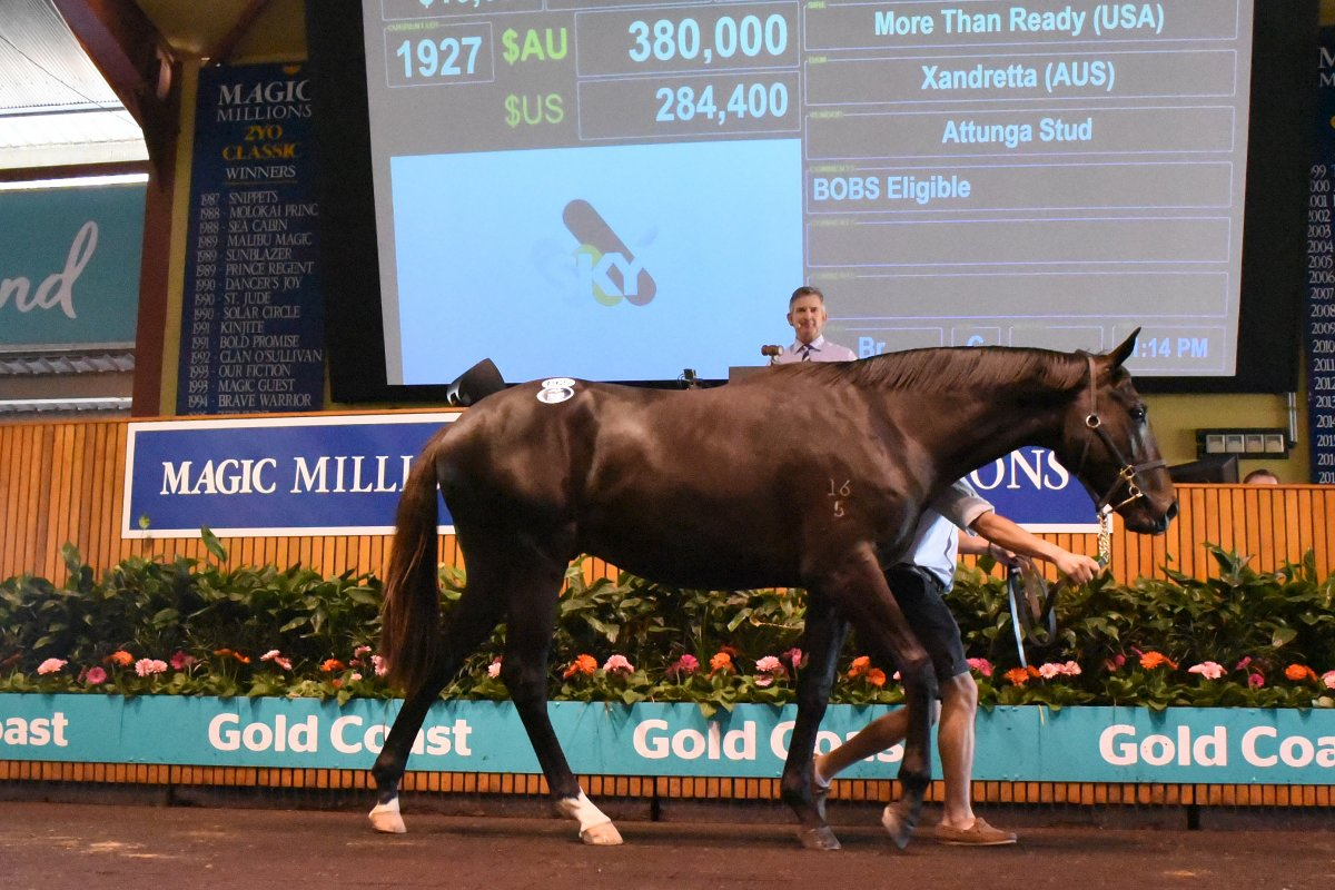 Moore Strikes at the National Yearling Sale