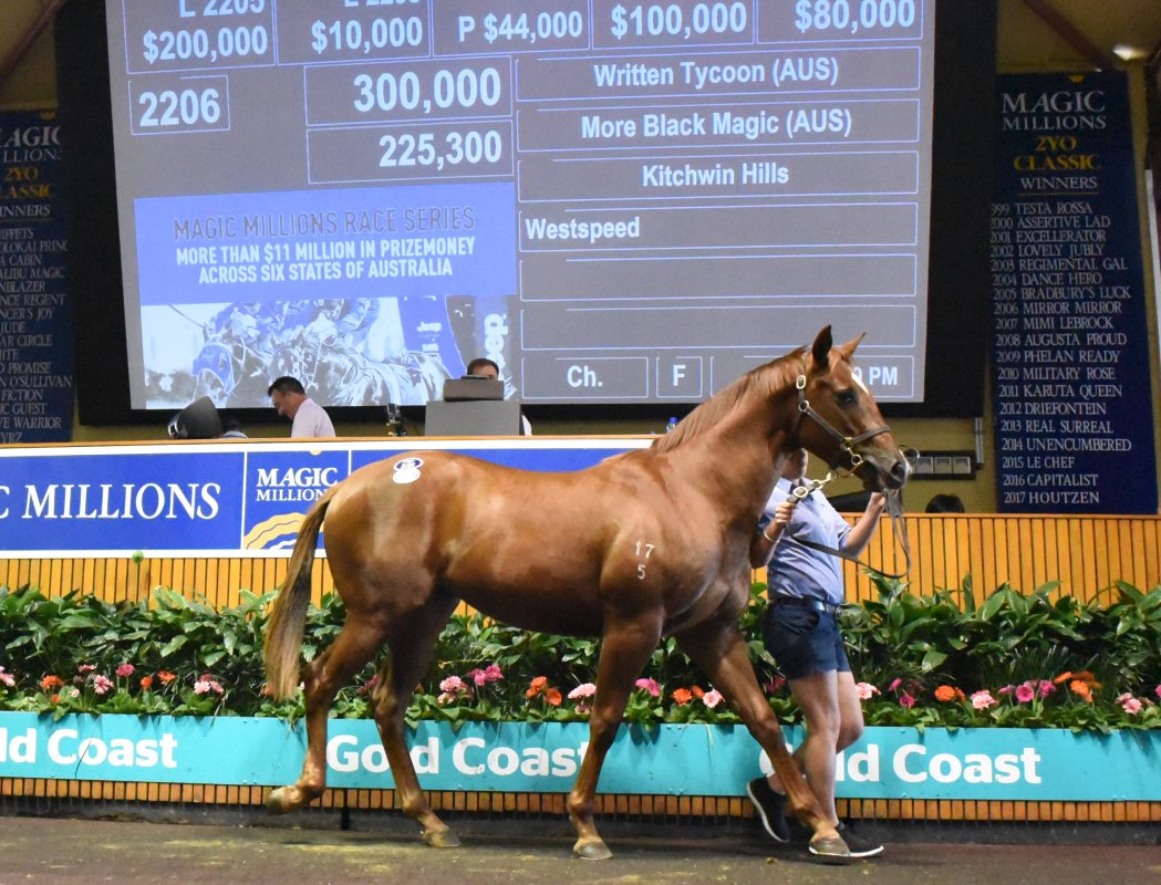 Written Tycoon Filly Tops National Yearling Day Two