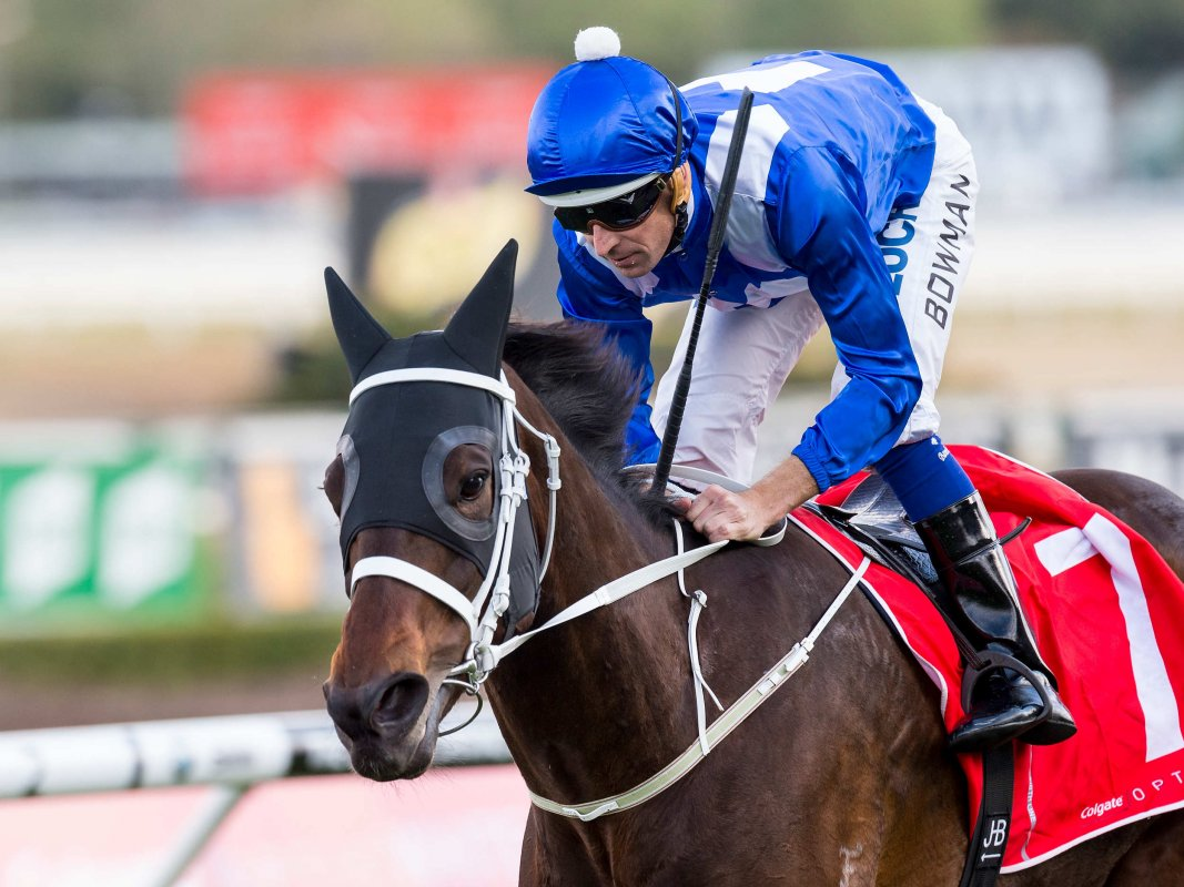 Winx's Streak Hits 20 with 13th Group One Win