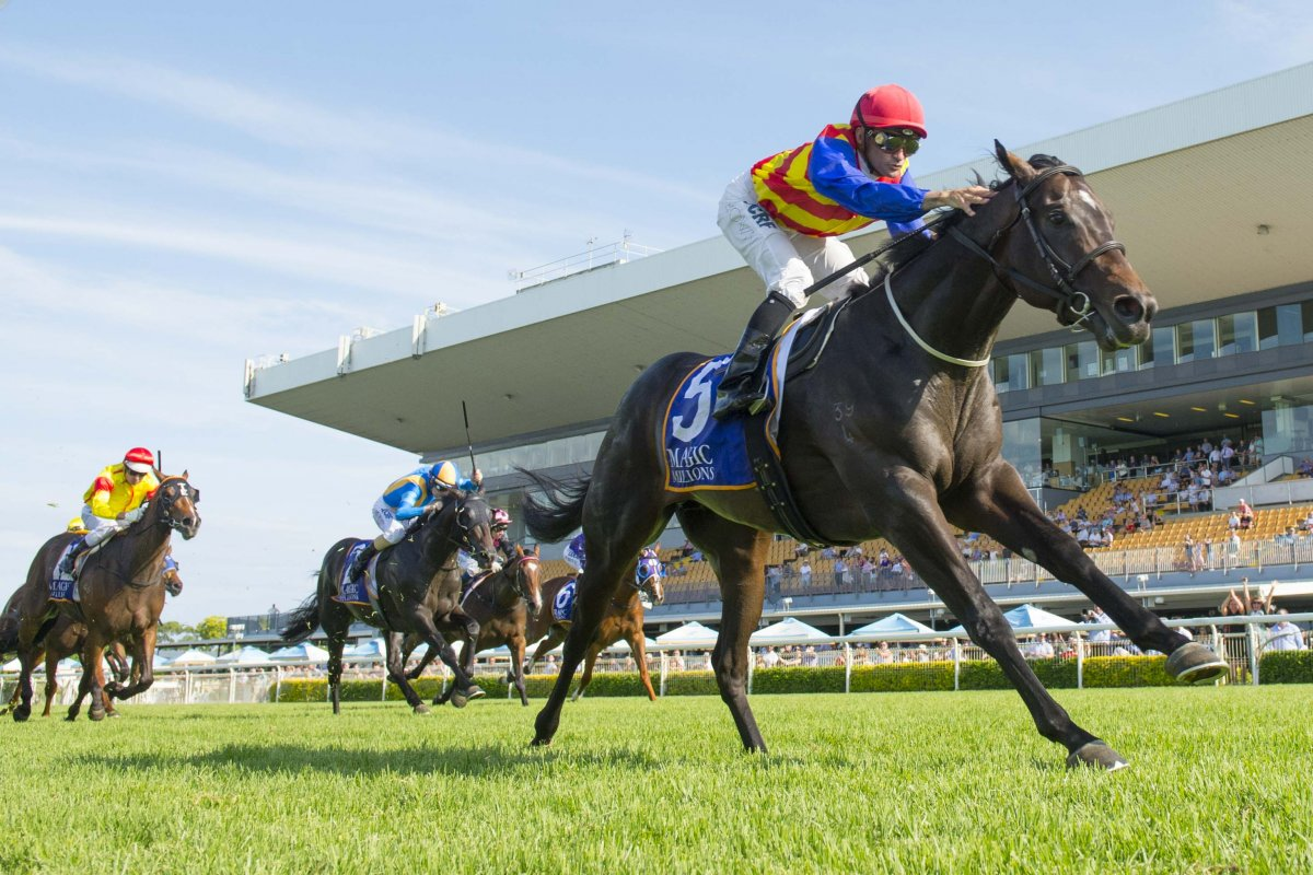 Sparkling Performances on Road to MM Raceday