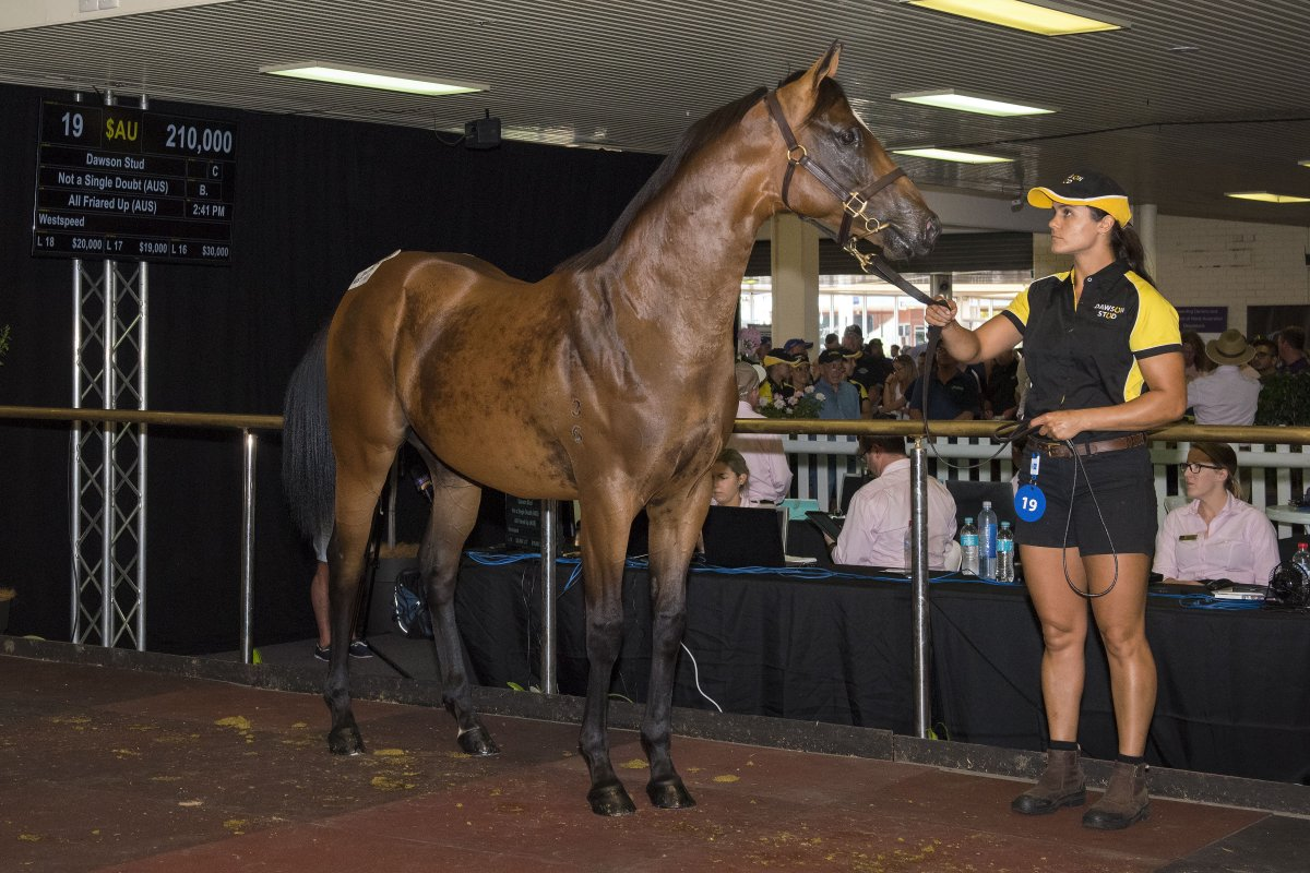 Records Smashed at Best Ever Day of Perth Yearling Sale