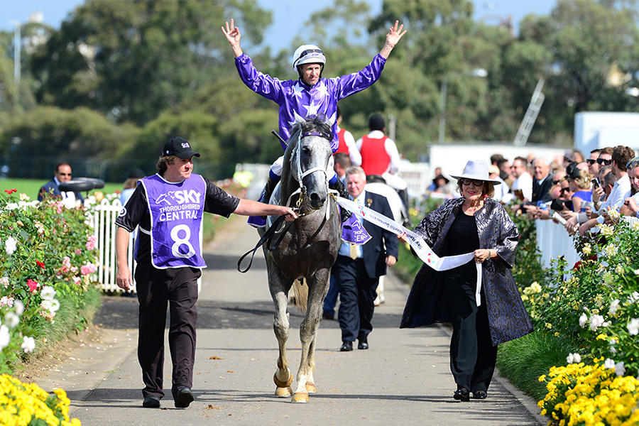D'Argento Romps Home in Rosehill Guineas
