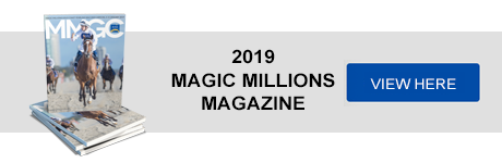 2019 Gold Coast Yearling Sale - Magic Millions