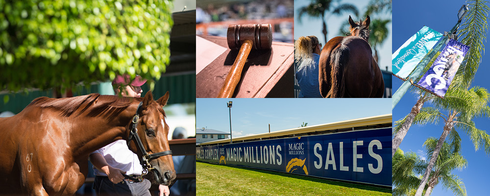 Outstanding National Sale Supplementary Catalogues Online