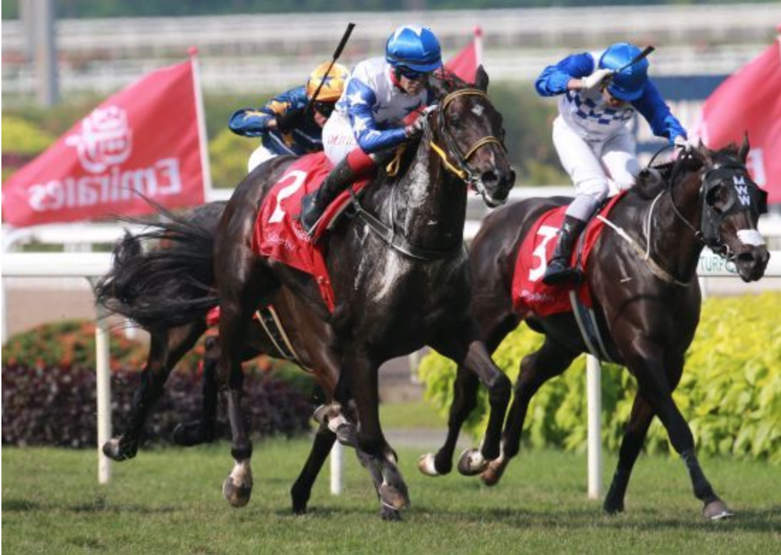 Magic Graduates Sweep Horseshoe and Derby in Singapore