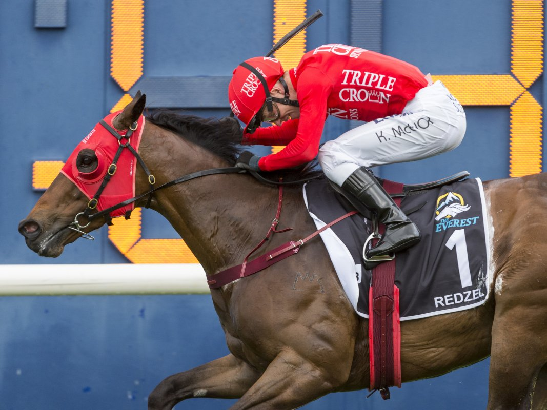 Redzel Conquers The Everest Again