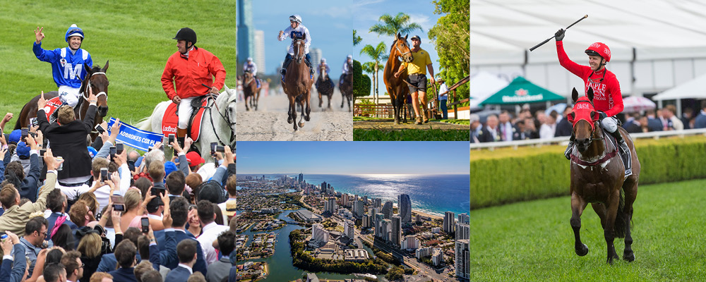 The Wait is Over – Gold Coast Yearling Sale Goes Online