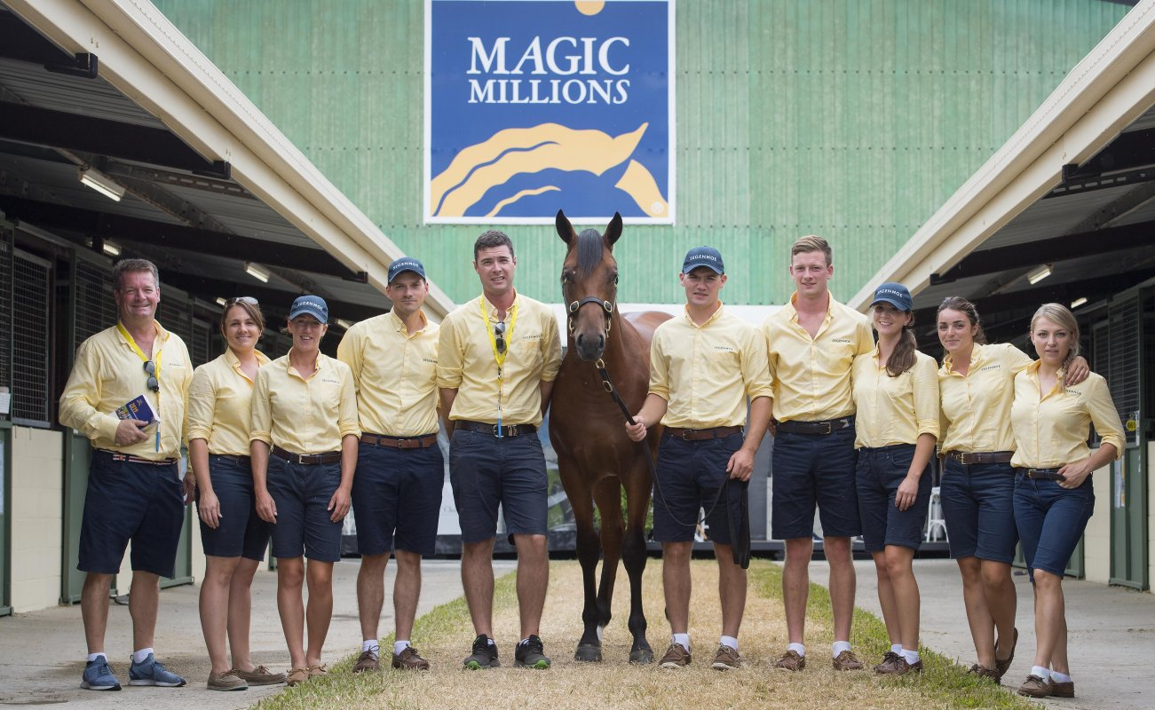Redoute's Colt Leads the Way on the Gold Coast