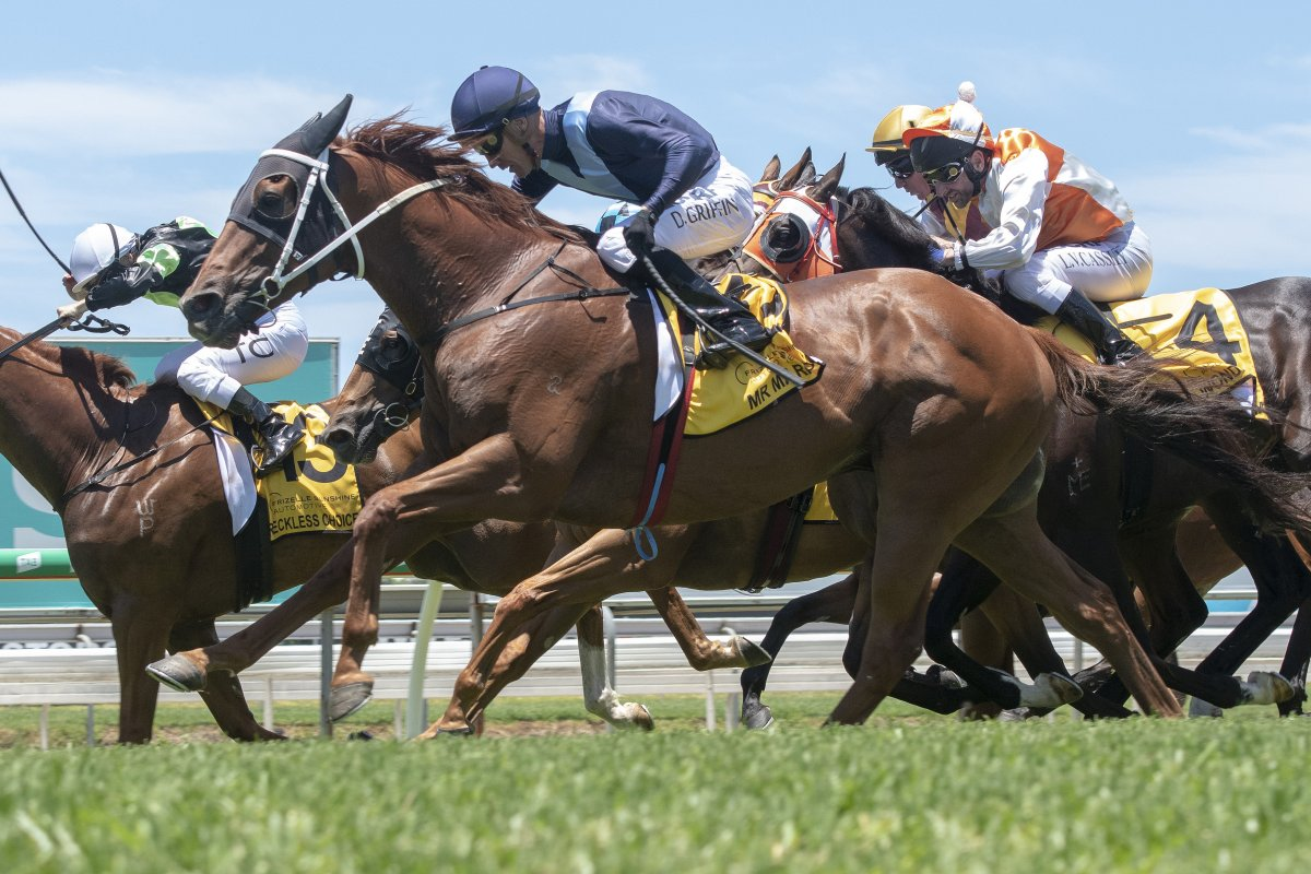 Mr Markou Storms Home in Country Cup