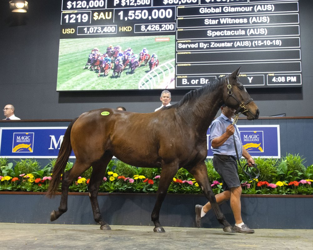 Global Glamour Stars at National Broodmare Sale
