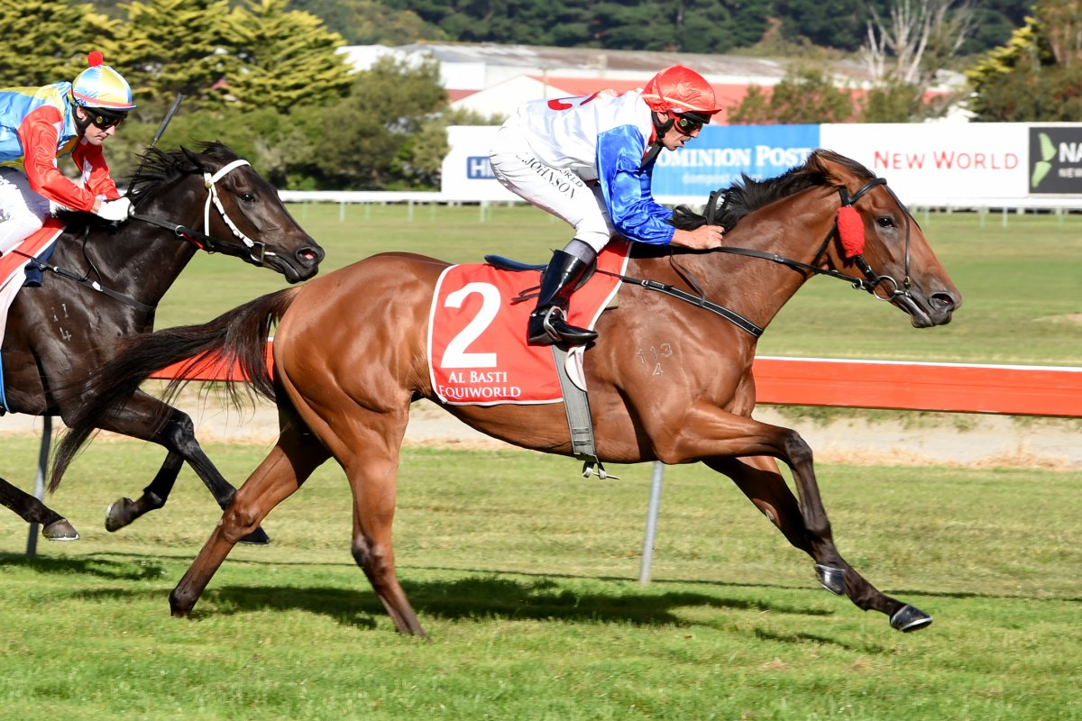 Star Late Supplementary for National Broodmare Sale