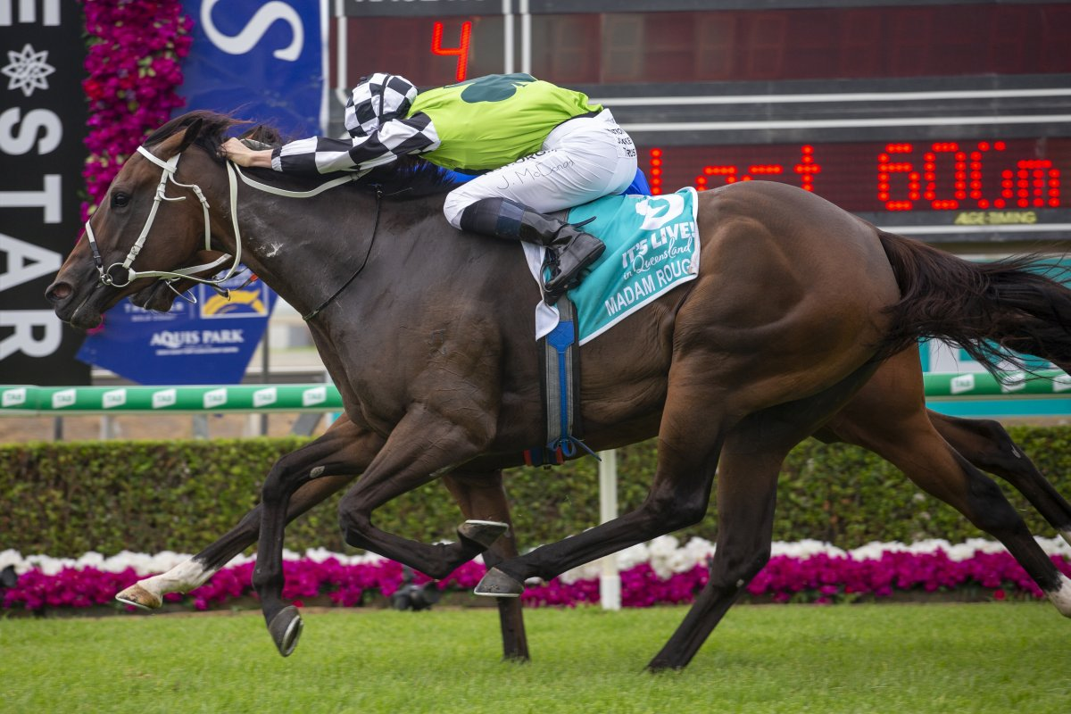 Madam Rouge Storms Home for Snippets Triumph