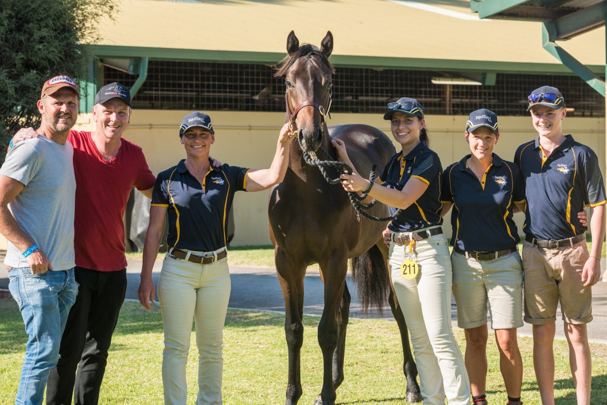 Kermadec Colt Tops Day One of Adelaide Yearling Sale
