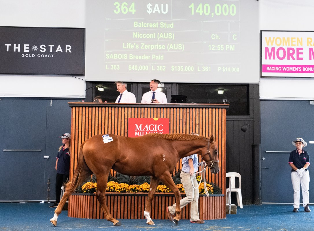 Breeze Up Buyers Make Impact at Adelaide Yearling Sale
