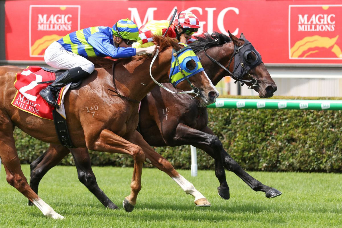 Amish Boy Scores Thrilling Adelaide Classic Win