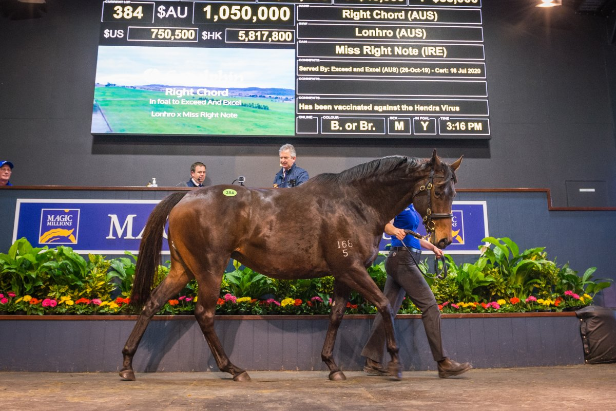 Pierro's Sister Tops Day Two on Gold Coast