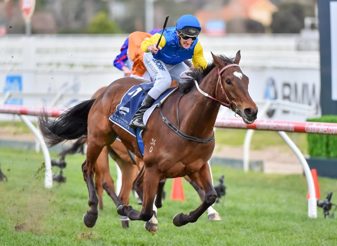 Magic Millions Joins MRC for Group One Glory