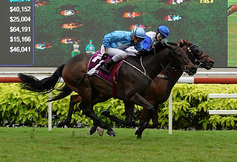 Gold Coast Buy Breezes Home in Singapore Derby