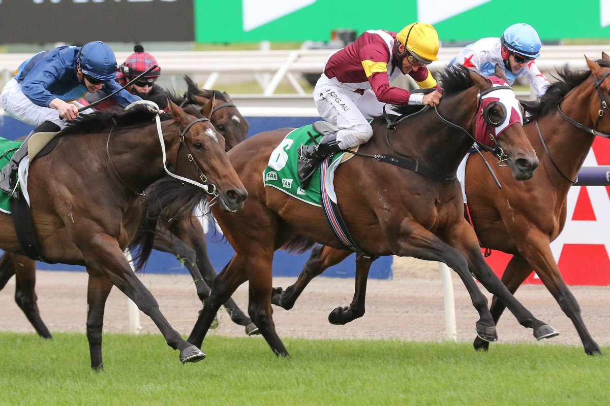 Shout the Bar Blooms in Empire Rose Stakes