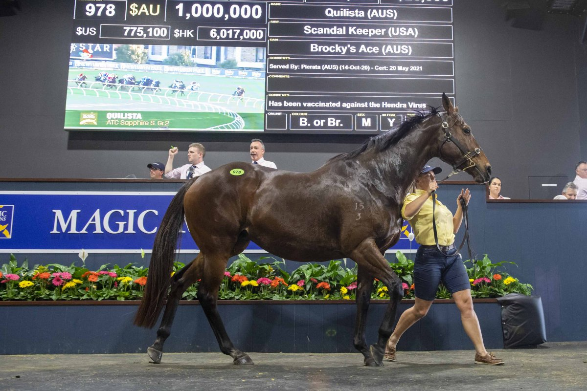 Quilista Tops Day Two of National Broodmare Sale