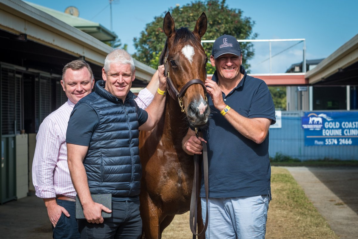 Records Smashed at Best Ever National Broodmare Sale